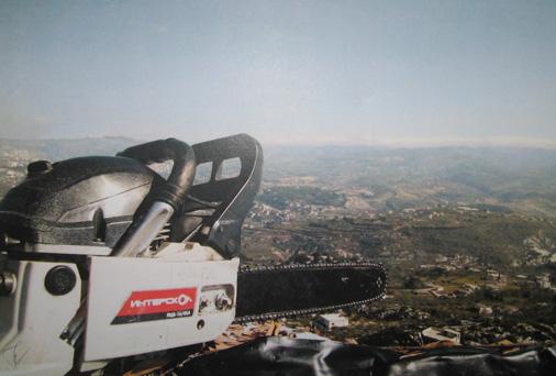 Фото дня: бензопила «ИНТЕРСКОЛ» в Сирии